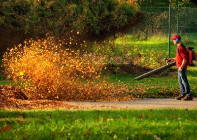Herbstpflege